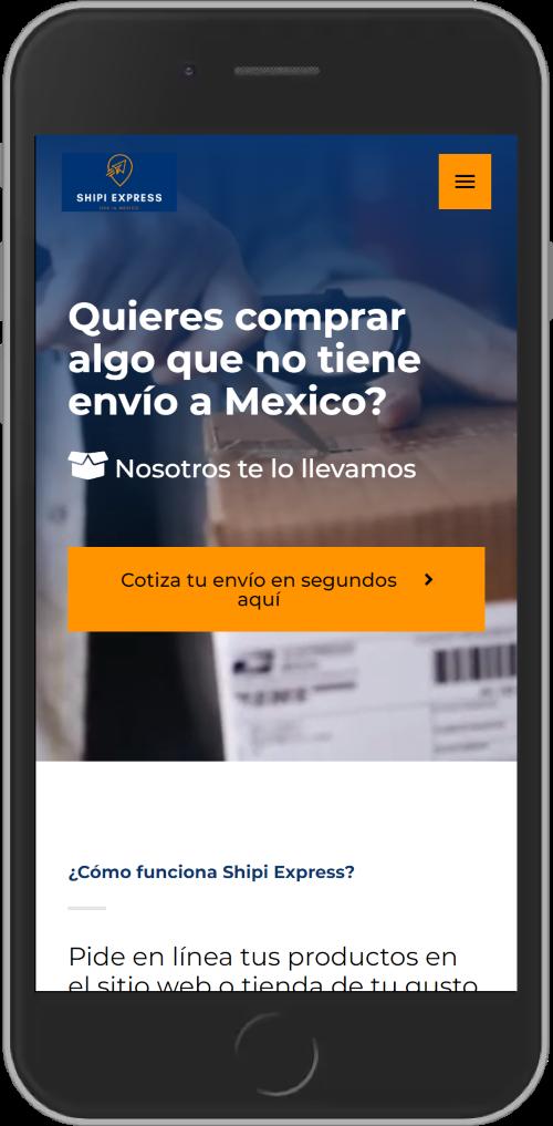Planes Paginas Web Monterrey, Landing Page